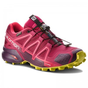 bc89ca8d7072 Chaussures SALOMON - Speedcross 4 Gtx GORE-TEX 404666 22 G0 Beet Red Poten